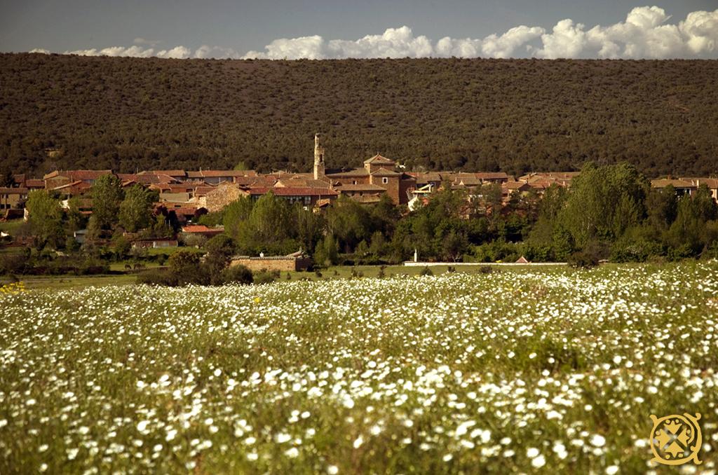 la-lecheria-val-de-sanlorenzo-paisaje